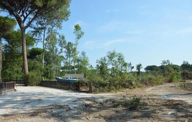 Immagine News - cervia-riaprono-il-parco-naturale-e-cerviavventura