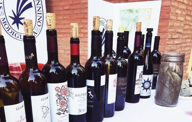 Immagine News - modigliana-dal-7-al-9-settembre-anteprima-per-la-viticoltura-eroica-di-questa-sottozona