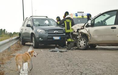 Immagine News - classe-schianto-tra-due-auto-7-feriti