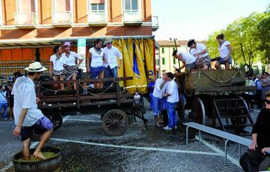 Immagine News - a-tavola-tra-collina-valli-e-campagna-in-provincia-di-ravenna