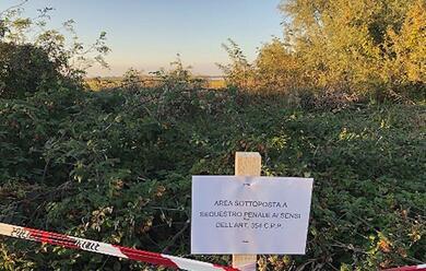 Immagine News - ravenna-linchiesta-sulla-valle-della-canna-sequestri-morti-di-uccelli-e-polemiche