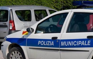 Immagine News - faenza-86enne-urta-unauto-investe-il-proprietario-che-cerca-di-fermarlo-e-scappa