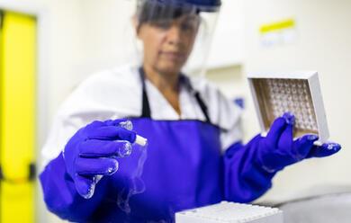 Immagine News - coronavirus-in-regione-457-nuovi-casi-21.486-316-guarigioni-e-altre-55-decessi-in-romagna-63