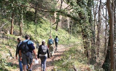 collina-otto-itinerari-apiedi-e-in-bici-alla-scoperta-dellaappennino