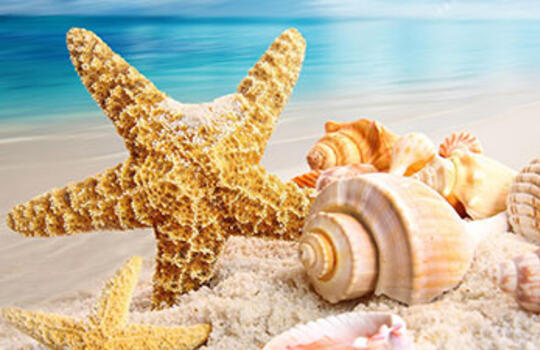 agenziainternazionale it residence-idea-vacanze 022