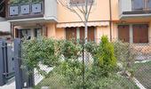 agenziainternazionale it giovenali-34b-i43 004