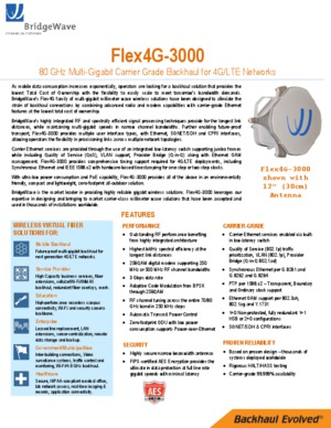 DataSheet Flex4G-3000